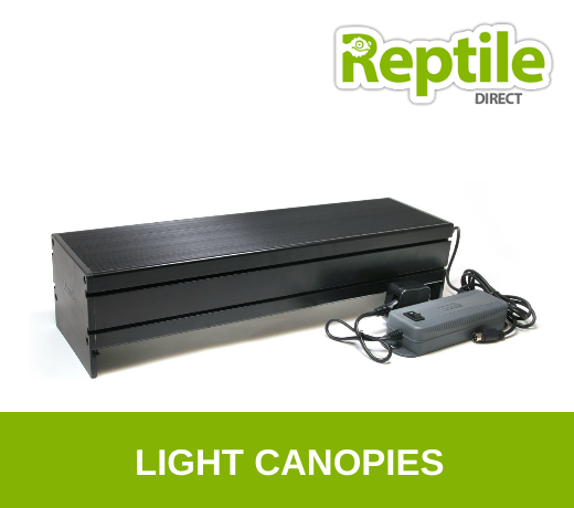 Light Canopies