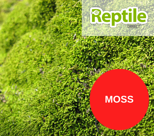 Moss Substrate