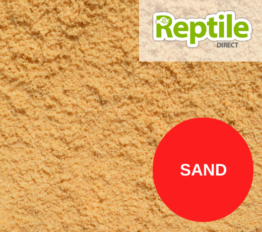 Sand Substrate